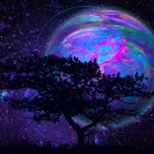 Natura - Terra - Vita - Movimento psicoespessivo
