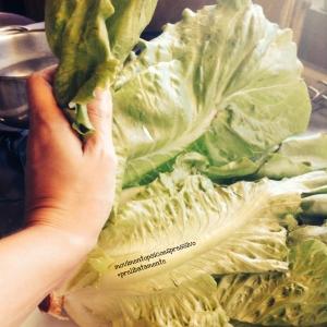 Conservare l'insalata - fase 1