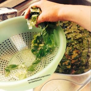 Conservare l'insalata - fase 4