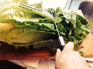 Conservare insalata - fase 2