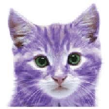 gattino viola - immagine da chloe155.deviantart.com