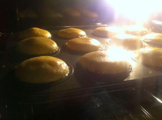 muffin 8